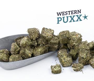 Höveler Western PUXX