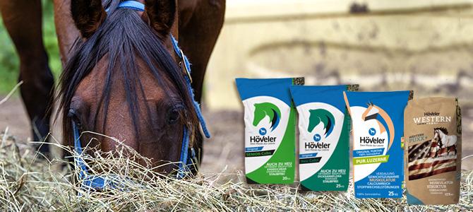 Heu - Fluch und Segen der modernen Pferdehaltung