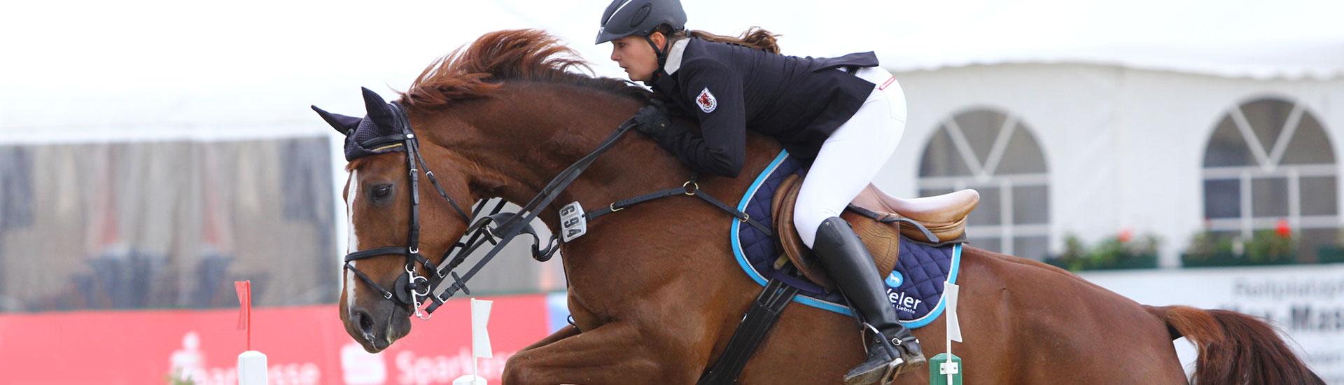 headbilder-kapitel-pferdefutter-sport