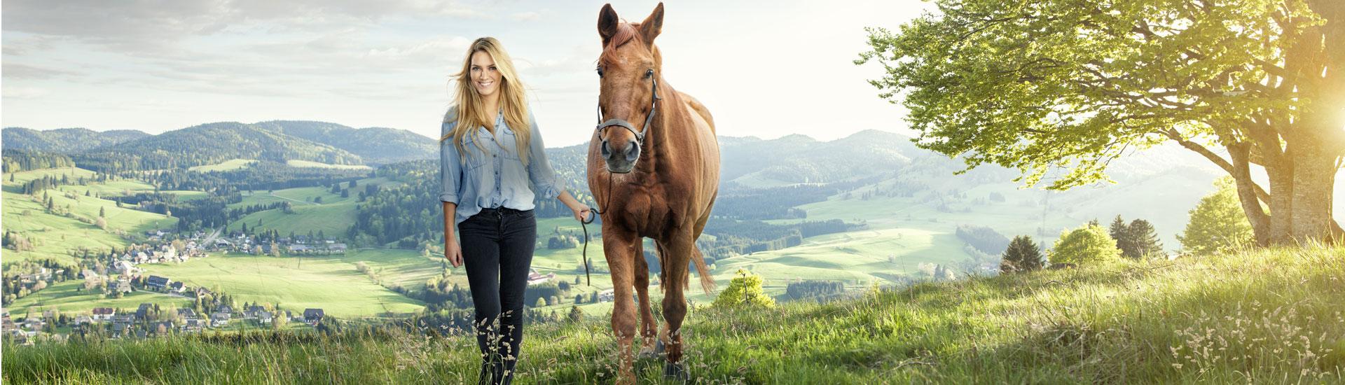 headbilder-kapitel-pferdefutter-freizeit